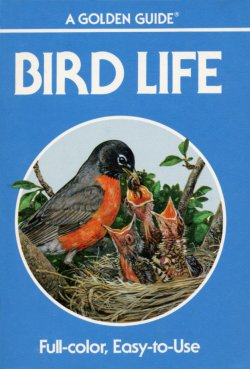 Bird Life Golden Guide
