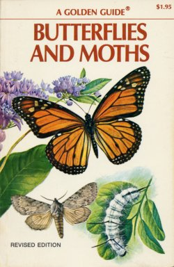 Guide to Butterflies and Moths, Mitchel