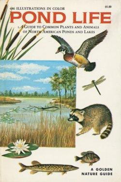 Macmillan: Series: A Golden Guide from St. Martin's Press
