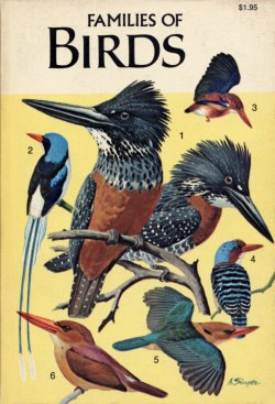 families of birds golden guide rh vintagepbks com angry birds golden eggs guide golden guide birds of north america